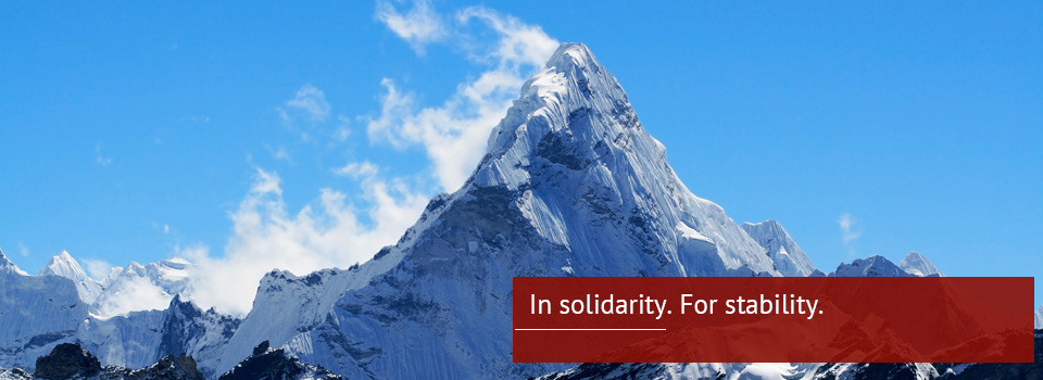 In-Solidarity-for-Stability
